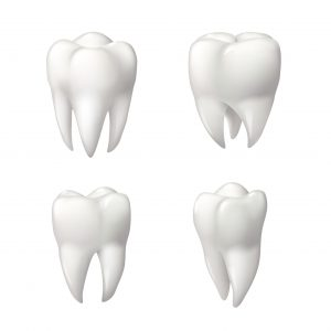 If your wisdom teeth are coming in, there are a few things you should know about them!